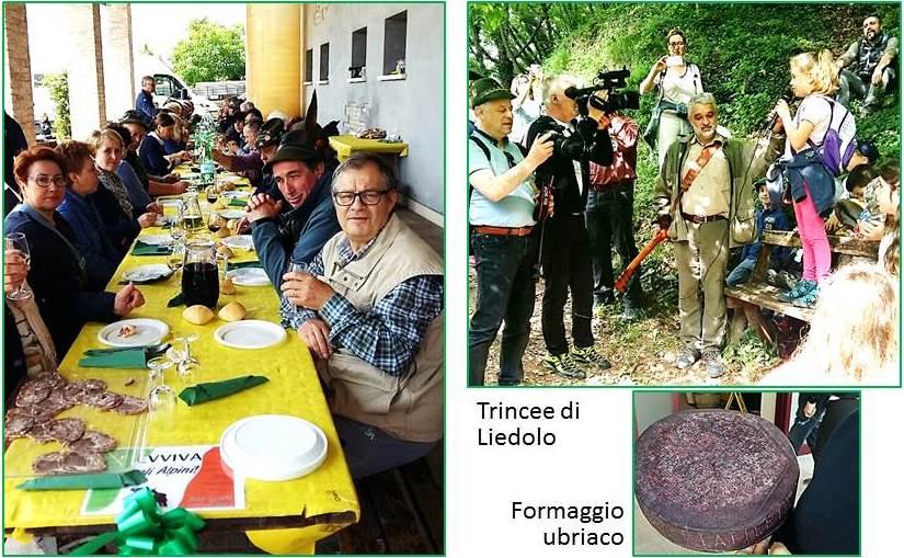 Treviso a1